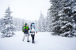 Hiker in the winter forest
