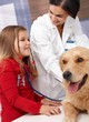 Little girl and dog at pets' clinic