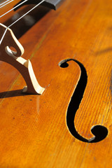 Cellodecke mit Brücke und F-loch