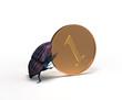 scarab rolls a coin