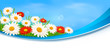 Nature banner with colorful flowers. Vector.