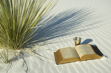 Bible and Cup in white desert