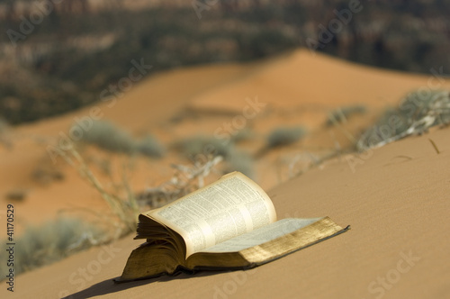 Blowing pages in pink sand dunes