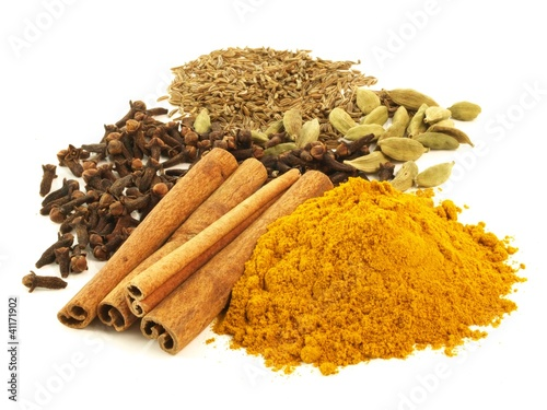 Spices, isolated