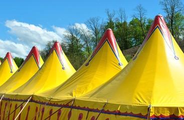 Cirque, la ménagerie