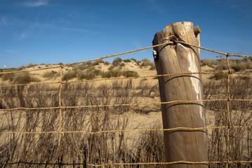 Protection fence on a Doñana beach