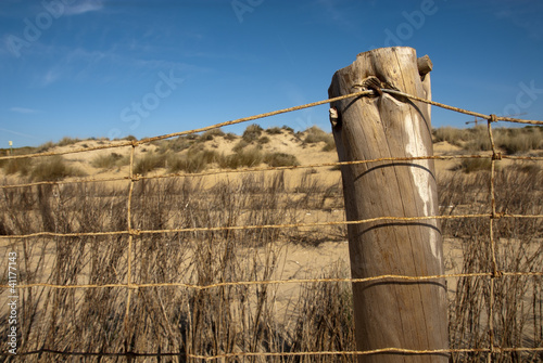 Protection fence on a Doñana beach