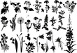 collection of wild flowers silhouettes - 41179390