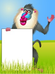 Baboon with blank sign