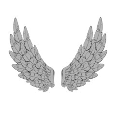 Vector illustration of vintage wings