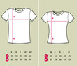 T-Shirt Sizes (men and women)