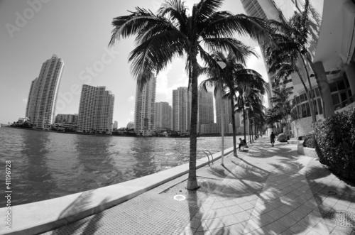 Szczegóły Chopin Plaza, Miami