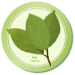 Bay Leaves Herb, for cooking, French blend Bouquet garni.