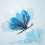 Butterfly like flower / Surreal sketch