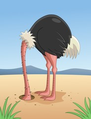 Ostrich hiding head in sand