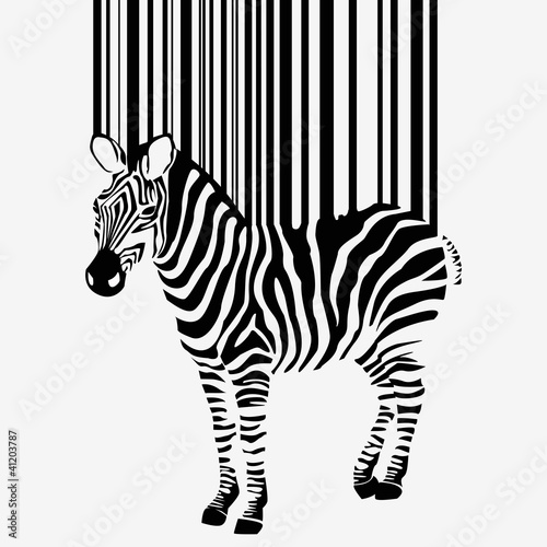 abstract vector zebra silhouette with barcode © sdmix