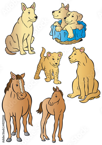 Mother & baby dog, horse & lioness