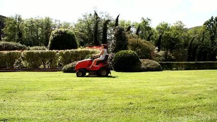 Giardiniere che taglia il prato