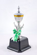 Golden Trophy ,Winner award of Champion