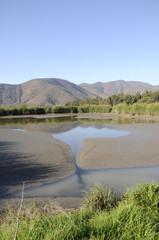 Paisaje de campo.Humedal.Chile