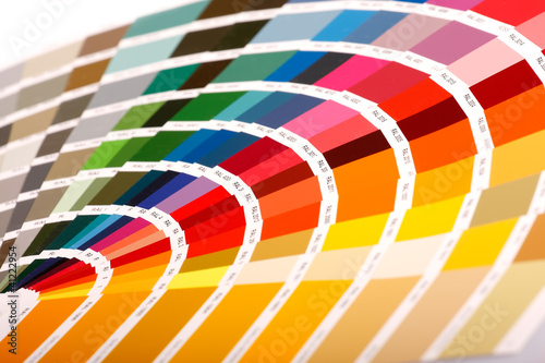 Tavolozza colori ( Pantone )