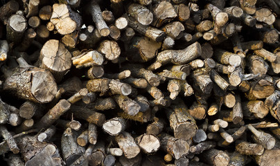 background with wooden logs.