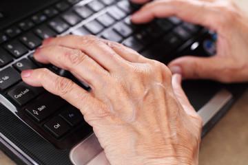 Seniors in computer