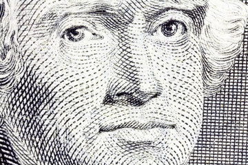 Macro of Thomas Jefferson on the US two dollar bill.