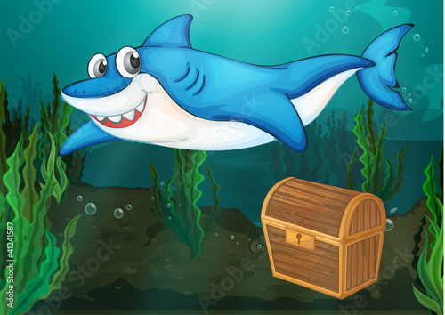 sharky - 41241587