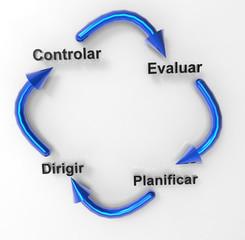 Proceso De Dirección Empresarial