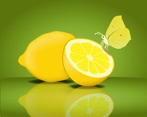 Zitronenfalter mit Zitronen Vektor
