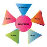 Types of enterprises diagram. poster