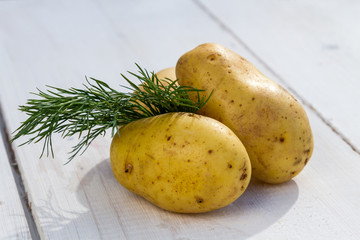 Fresh potatoes and dill on the white board