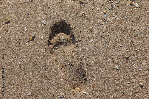 One lonely footprint on sand