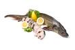 pesce storione