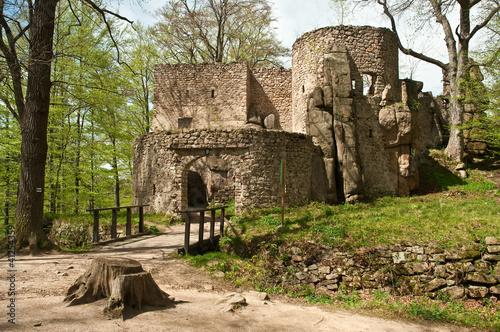 Fototapeten,schloss,ruinenlandschaft,polen,architektur