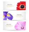 Spring flowers background design for banner or brochures