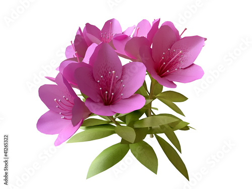 Bouquet of Pink Flowers in 3D