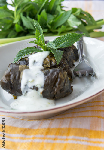 Stuffed dock leaves