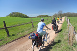Cyclists in a countryside