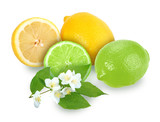 Citrus fruits with branch of jasmine