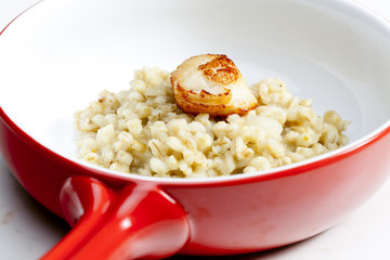 fried Saint Jacques mollusc with pearl barley risotto