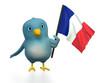 "Blue bird (""Bluebert"") with the flag of france"