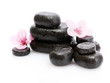 Spa stones with drops and pink sakura flowers isolated on white.