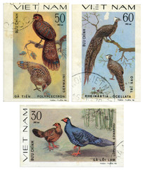 Diverse collection of birds. Vietnam postage stamp