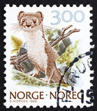 Postage stamp Norway 1989 Ermine, Stoat, Mustela Erminea poster
