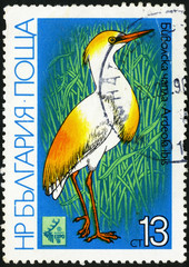 Cattle Egret - Ardeola ibis. Postage stamp Bulgaria