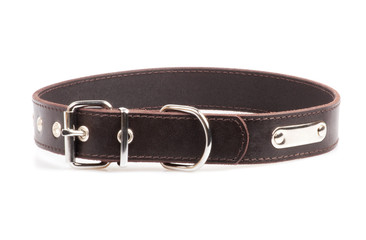 brown leather collar isolated over white background