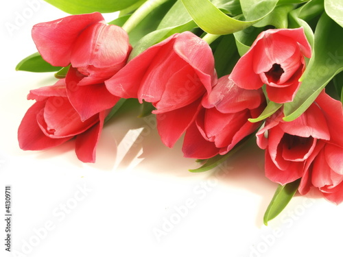 Bunch of tulips, closeup
