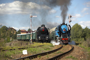 steam trains from Krupa station, steam locomotive,Czech Republic